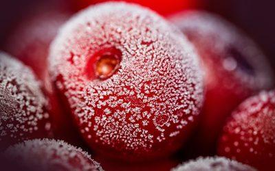 ¿Se pueden congelar las cerezas?
